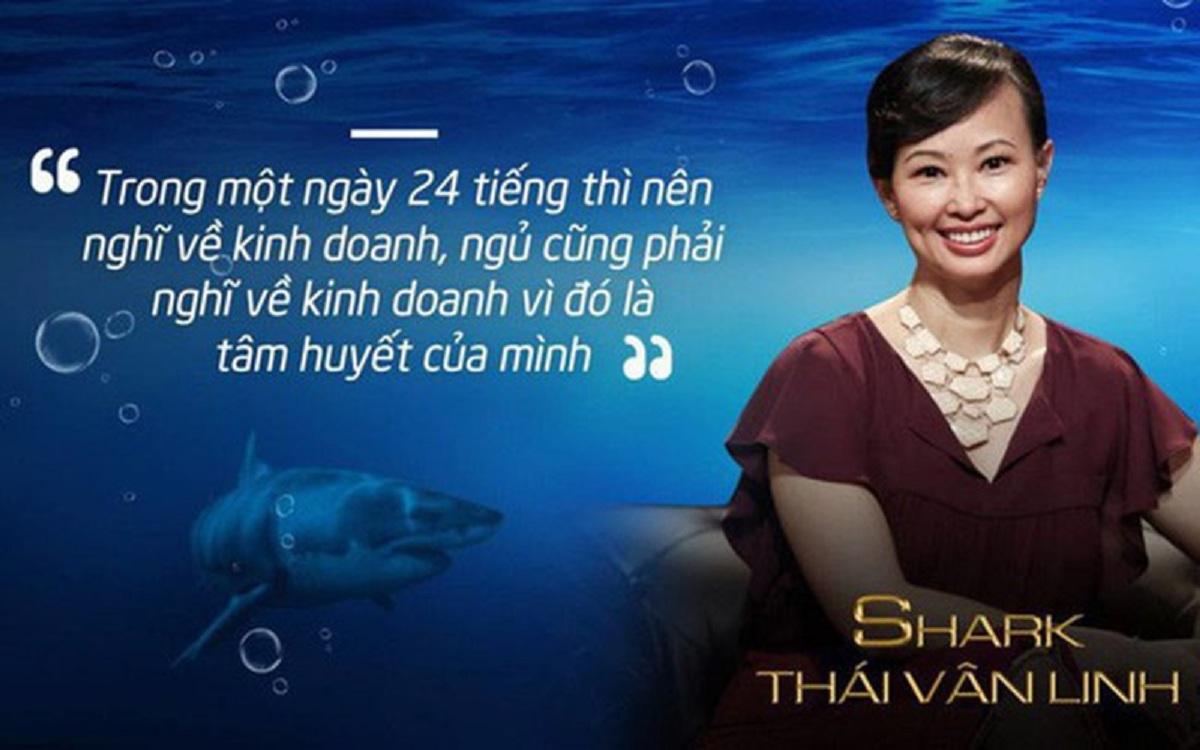 Sự nghiệp của Shark Linh trải qua nhiều giai đoạn khác nhau